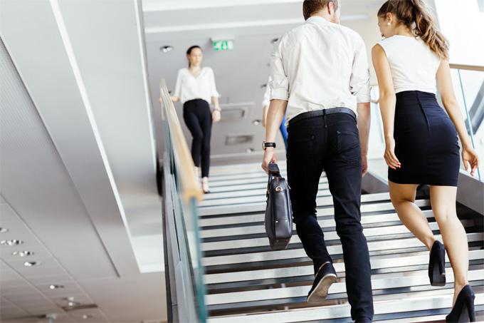 Perfiles del máster de administración de empresas